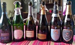 Franciacorta Italian Sparkling Wine LI=ine up